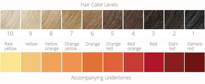 lighter hair: hair color levels