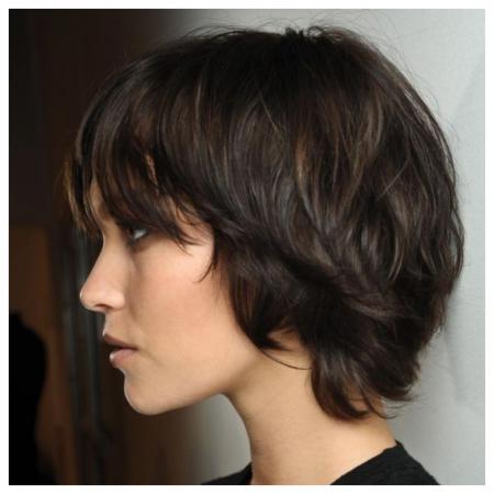 PixieBob Haircut