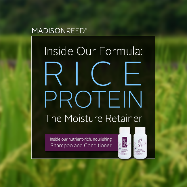 Rice Protein for Hair Health and Shine